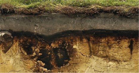 Bodenschutz Mlul