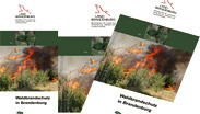 Flyer Waldbrandschutz in Brandenburg