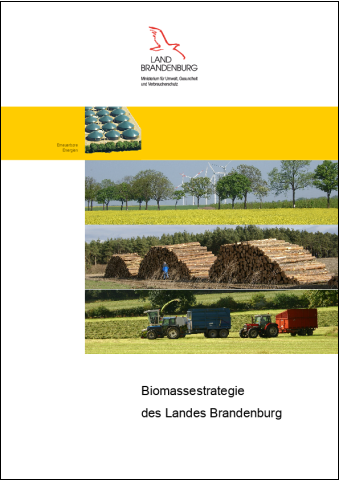 Titelblatt Biomassestrategie